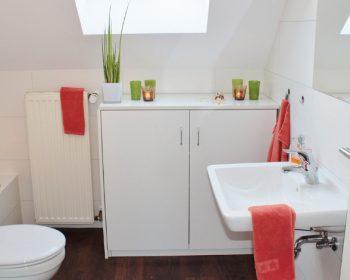 Ako si vybrať skrinky do kúpeľne?