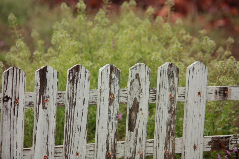 Gabiónové ploty: trendy alternatíva oplotenia