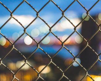 Vyberáme pletivo na plot: Pre ktorý typ sa rozhodnúť?